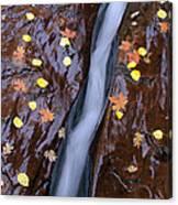 Water Ribbon Canvas Print