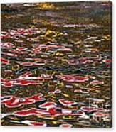 Water Ripple Patterns 1 Canvas Print
