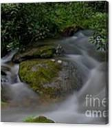 Water Rock Canvas Print