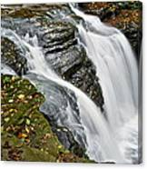 Water Rushes Forth Canvas Print