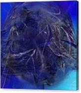 Water Seiger Canvas Print