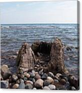 Water Stump Canvas Print