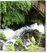 Water Under The Bridge I Canvas Print