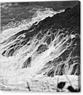 Water Web Canvas Print