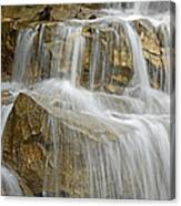 The Gold Standard Canvas Print