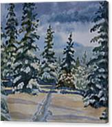 Original Watercolor - Colorado Winter Pines Canvas Print