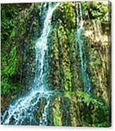 Waterfall 3 Canvas Print