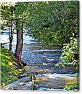Waterfall And Hammock In Summer Canvas Print