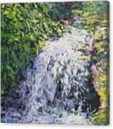 Waterfall At Chicago Botanic Gardens Canvas Print