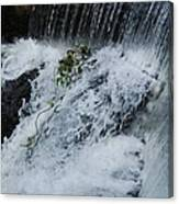 A Waterfall In Bantry, Ireland Canvas Print