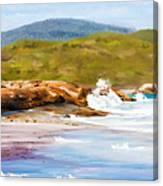 Waterfall Beach Denmark Painting Canvas Print