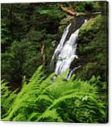Waterfall Fern Square Canvas Print