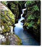 Waterfall, Glacier National Park Canvas Print