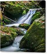 Waterfall Great Smoky Mountains  Canvas Print