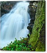 Waterfall - High Water On Falls Brook Canvas Print