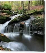 Waterfall In Autumn Woods Canvas Print
