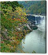 Waterfall In Forest, Cumberland Falls Canvas Print