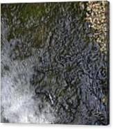 waterfall in park Angerenstein in Arnhem Canvas Print