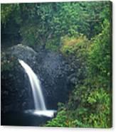 Waterfall In Rainforest Hana Highway Maui Hawaii Canvas Print