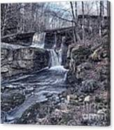 Waterfall In The Fall Canvas Print