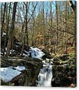 Waterfall Rush Canvas Print