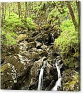 Waterfall Through Woodland Canvas Print