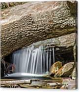 Waterfall Under Fallen Log Canvas Print