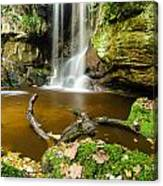 Waterfall With Autumn Leaves Canvas Print