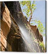 Waterfall Zion National Park Canvas Print