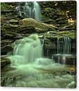 Waterfalling Through Ricketts Glen Canvas Print