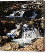 Forever Flowing Canvas Print