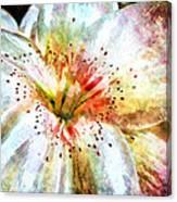 Waterflower Canvas Print