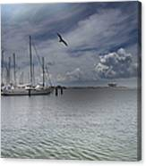Waterfront View  Canvas Print