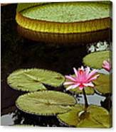 Waterlilies And Platters Vertical Romance Canvas Print