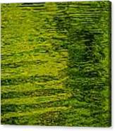 Water's Green Canvas Print