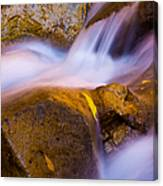 Waters Of Zion Canvas Print