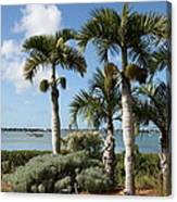 Waterview Canvas Print