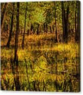 Watery Ramble Canvas Print