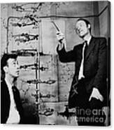 Watson And Crick With Dna Model Canvas Print