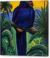 Wattled Carassow Canvas Print