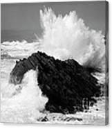 Wave At Shore Acres Bw Canvas Print