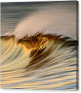 Wave C6j2640 Canvas Print