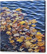 Wave Of Fall Leaves Canvas Print