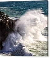 Wave Power Canvas Print