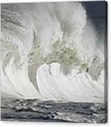 Wave Whitewash Canvas Print