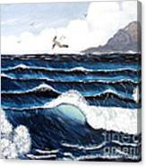 Waves And Tern Canvas Print
