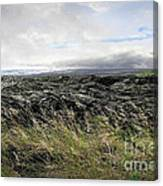 Waves Of Clouds Sea Lava And Grass Canvas Print