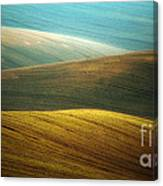 Waves Of Colours Canvas Print