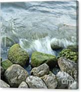 Waves On Mossy Rocks 2 Canvas Print