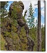 Waving Rock At Yellowstone Canvas Print